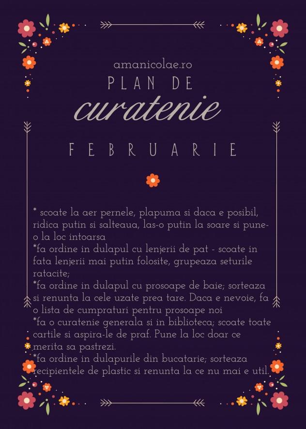 plan de curatenie februarie