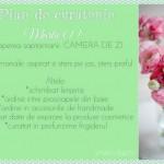 Plan de curatenie – Martie (1)