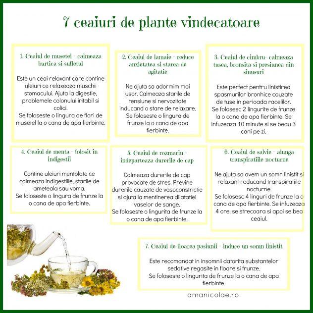 7 ceaiuri de plante vindecatoare
