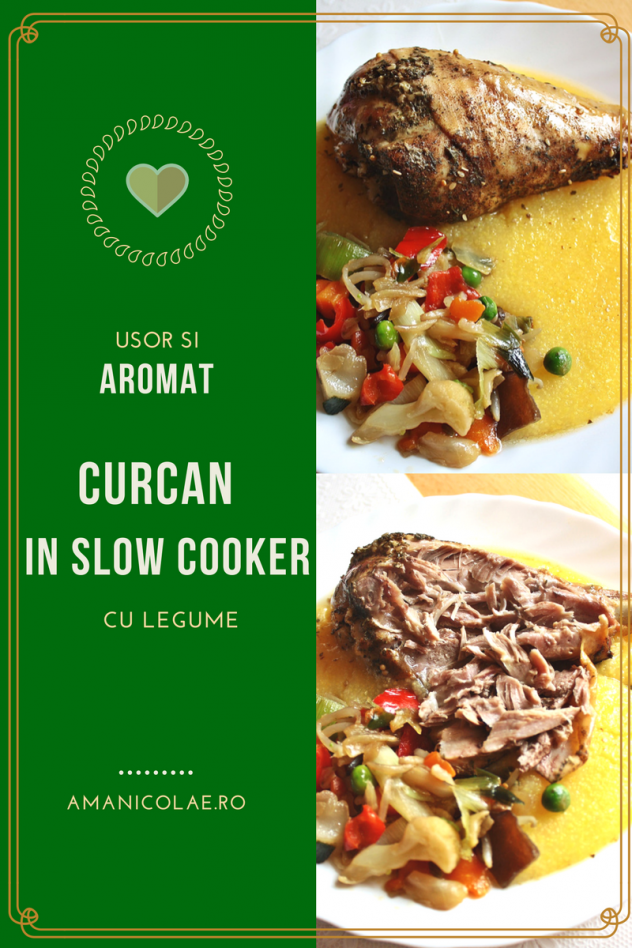 curcan-slow-cooker