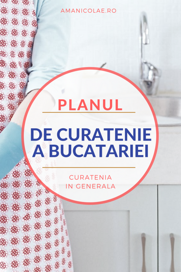 plan-curatenie-bucatarie-1
