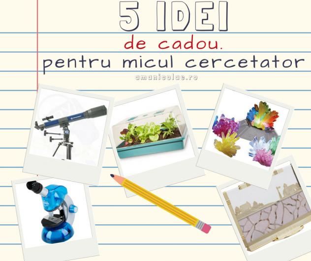 5-idei