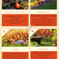 Octombrie in gradina - lista de sarcini pentru o gradina frumoasa