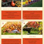 Octombrie in gradina – lista de sarcini pentru o gradina frumoasa